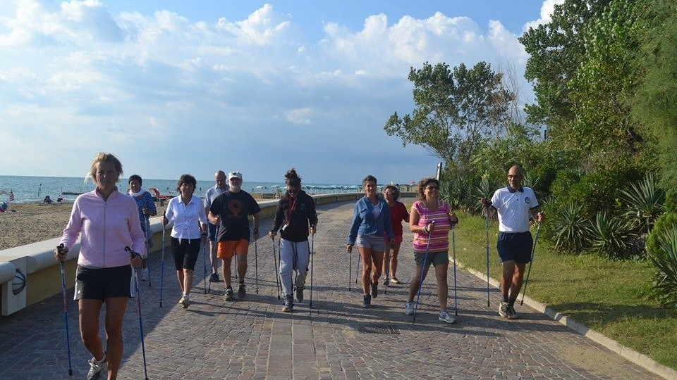 Nordic Walking on the waterfront
