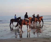 Horse ride on the beach in Lignano © Riccardo Riccamboni