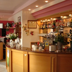 Il bar dell'hotel Rosapineta