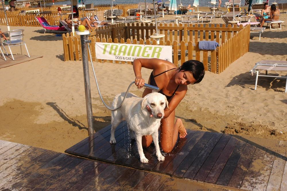 Vasca Da Bagno Per Cani Prezzi : Spiaggia per cani sabbiadoro doggy beach a lignano sabbiadoro